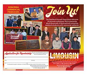 Association Premier Promotions