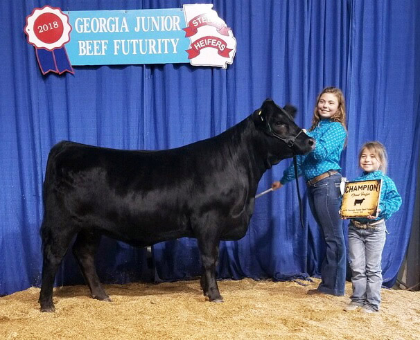 GSELKatherine120E Grand Champion Limousin