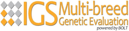 IGS Multi-breed Genetic Evaluation